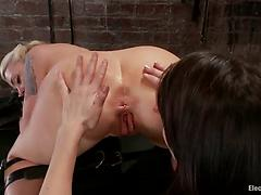 Tattooed blonde vixen gets tortured and banged from behind in a BDSM action